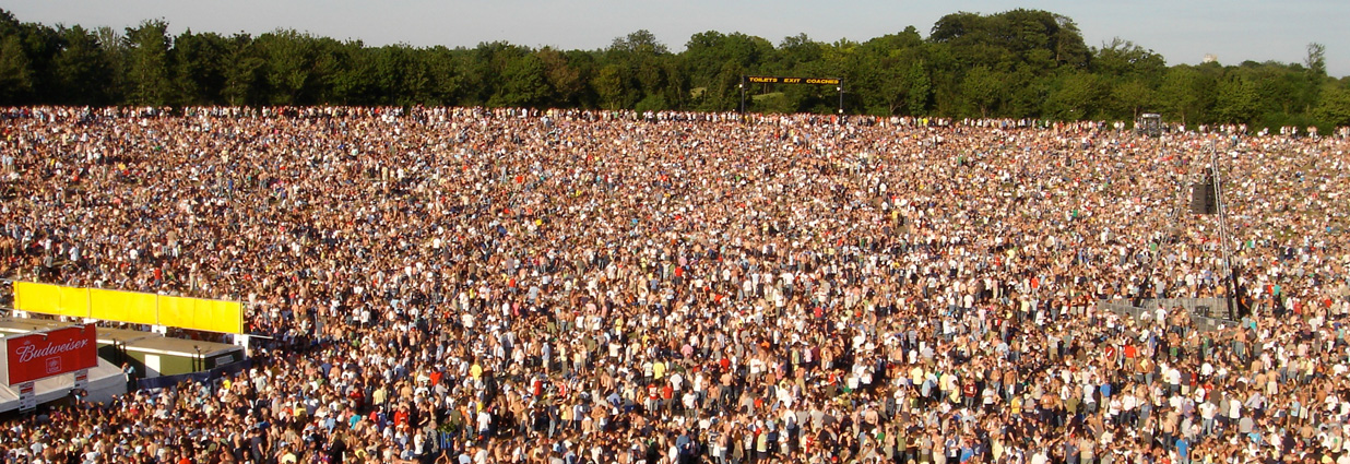 Crowd Management Consultancy